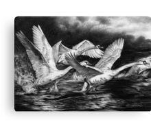 Co-Ordinated Chaos Canvas Print