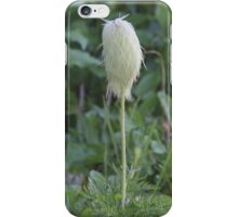 Western Anemone (Anemone occidentallis) iPhone Case/Skin