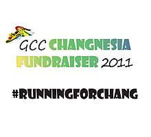 Changnesia Fundraiser 2011 Photographic Print