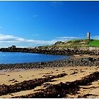 The Tower... by This is Fife Scotland