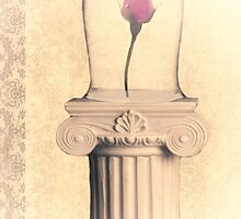 a rose in a bell jar by R Del Angel