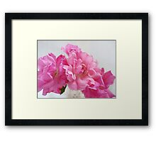 No Ordinary Roses Framed Print