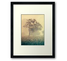 light and life Framed Print