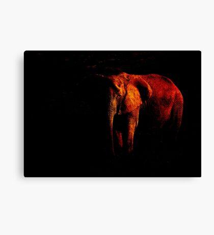 Save the Elephant Canvas Print