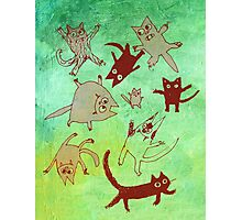 levitating kitties Photographic Print