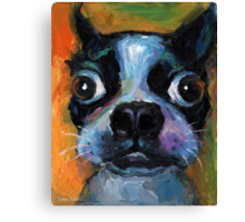 Cute Boston Terrier puppy dog portrait by Svetlana Novikova Canvas Print