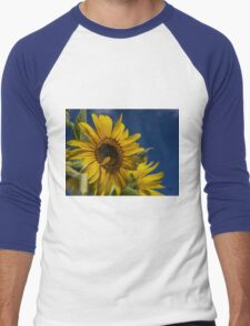 Sunflower At Burnside Farms Men's Baseball ¾ T-Shirt