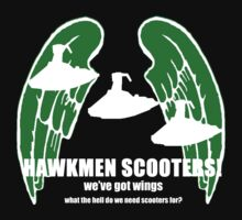 fly my hawkmen!(2) by kjen20