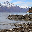 South Island, New Zealand by Anny Arden