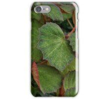 Lush Large Leaf Begonia  iPhone Case/Skin