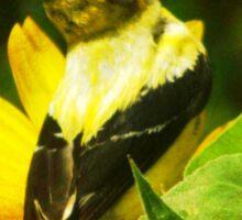 SUNFLOWER BIRDS Sticker
