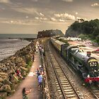 British Steam Railways 2014  by Rob Hawkins