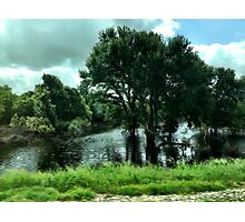 Flooded Trees Photographic Print