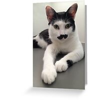 Felix the Moustache Cat Greeting Card