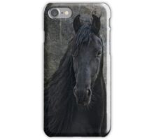 Young Frisian Stallion iPhone Case/Skin