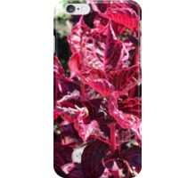 Texture with pink purple leaves. iPhone Case/Skin