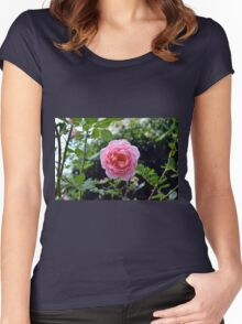 Pink rose on a natural green leaves background. Women's Fitted Scoop T-Shirt