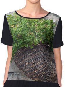Wooden horn with plants on a stone wall. Chiffon Top