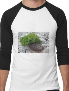 Wooden horn with plants on a stone wall. Men's Baseball ¾ T-Shirt