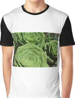 Pattern with succulents. Graphic T-Shirt