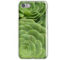 Pattern with succulents. iPhone Case/Skin