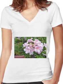 Pink flowers in pots. Women's Fitted V-Neck T-Shirt