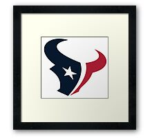 Houston Texans Fan Framed Print