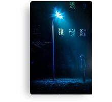 at night under a lantern Canvas Print
