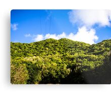 Lines To The Top Of The Hill Metal Print