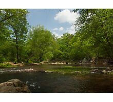 Springtime on the Eno River Photographic Print