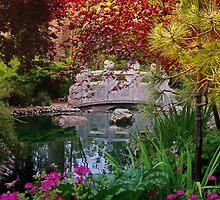 San Franicsco Pavillion Pond by David Denny