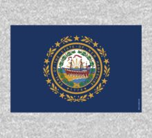 New Hampshire State Flag by USAswagg2