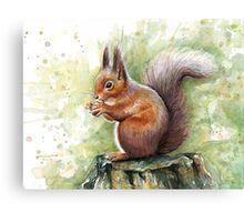 Cute Squirrel Watercolor Painting Canvas Print