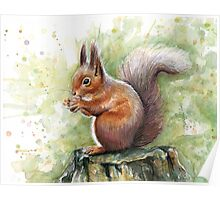 Cute Squirrel Watercolor Painting Poster