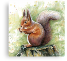 Nutty Squirrel Watercolor Art Canvas Print