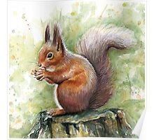 Nutty Squirrel Watercolor Art Poster