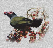 A male fig bird Kids Tee