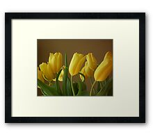 Yellow, My Favorite Tulips Framed Print