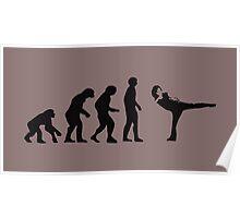 Evolution AM Poster