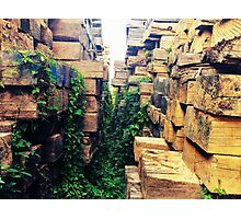 A Jenga Jungle  Photographic Print