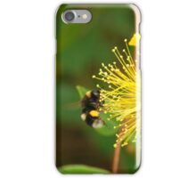 Busy bee in the Sunshine iPhone Case/Skin