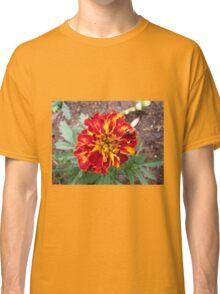 Flamboyant Marigold Classic T-Shirt