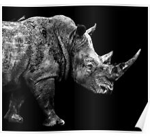 SAFARI PROFILE - RHINO BLACK EDITION Poster