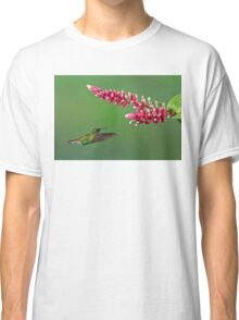 Coppery-headed emerald hummingbird - Costa Rica Classic T-Shirt