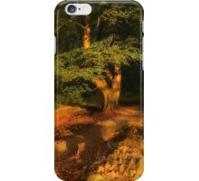 Penny Rock Woods iPhone Case/Skin