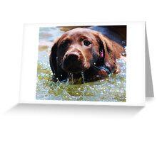 1st Swim Greeting Card