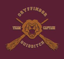 Gryffindor Lion and magic wand quidditch team captain by Latifa Salma lufa Poerawidjaja
