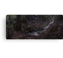 Zone 20: Forest Gateway Protected Forest Habitat:  Pic 10 of 13 - River Canvas Print