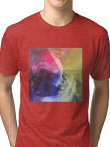 Rainbow Pug :) Tri-blend T-Shirt