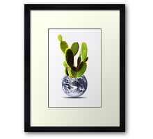 whole world is a cactus Framed Print
